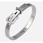 Titanium Bio Magnetic Negative Ion Belt Bracelet (Ladies)