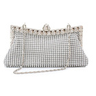 Luxe Shining Ladies Event Evening Purse Bag