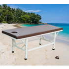 Professional Massage Table (Earthy Brown)