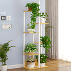 Wonderland 6-Tier Garden Plants Stand Planter Shelf (Oak)