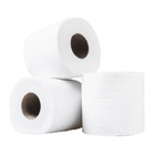 10 x Double Strength 3 Ply Toilet Paper Tissue Rolls