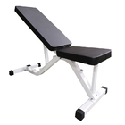 Multifunctional Flat / Incline / Decline Adjustable Fid Exercise Weight Bench